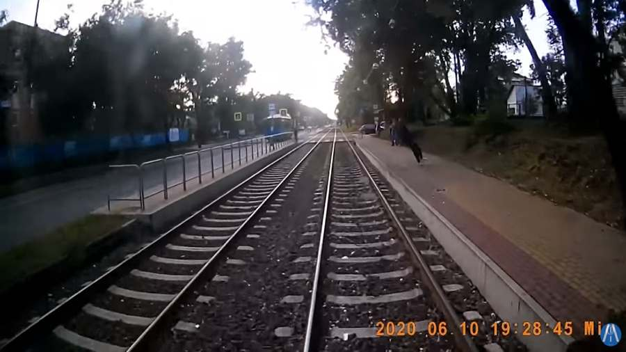 Villamos elé esett egy férfi Budapesten, az egészet rögzítették (+18 videó)