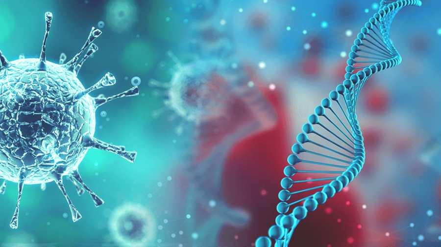 Egy új, aggasztó mutációval rendelkező koronavírus-variáns jelent meg New Yorkban
