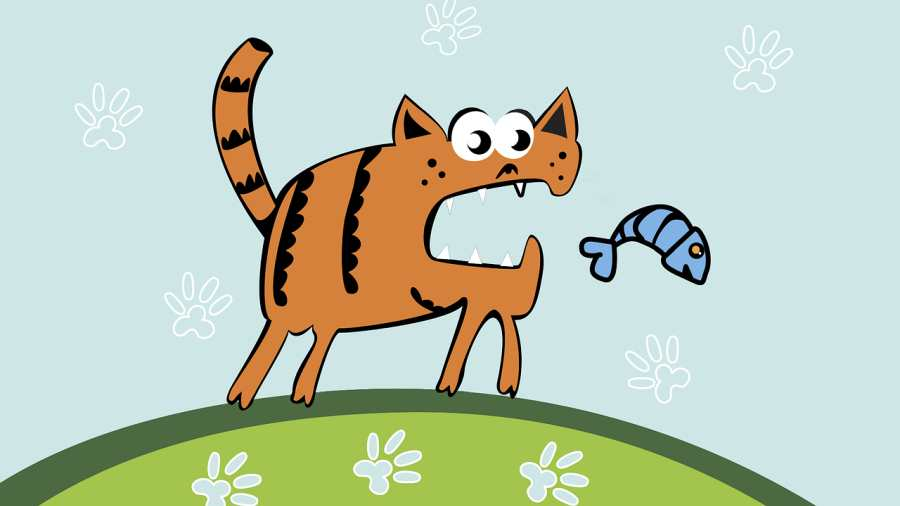 A mélyebb réteg – avagy tanuljunk a macskától